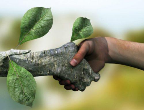 رتبه و کارنامه قبولی کنکور کارشناسی ارشد محیط زیست (کد ۱۱۴۶)