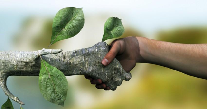 رتبه های قبولی ارشد 96 - 97 - 98 محیط زیست