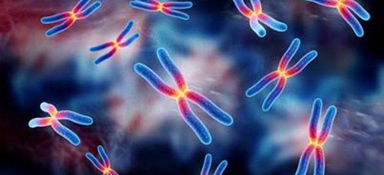 منابع کنکور کارشناسی ارشد زیستشناسی سلولی و مولکولی (کد ۱۲۰۶)