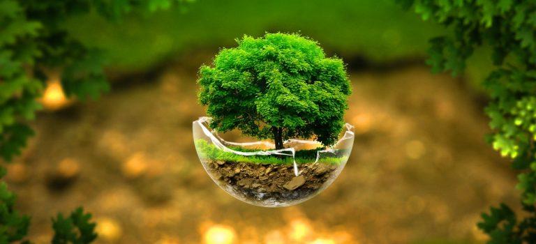 رتبه و کارنامه قبولی کنکور کارشناسی ارشد رشته علوم محیط زیست (کد ۱۲۱۵)
