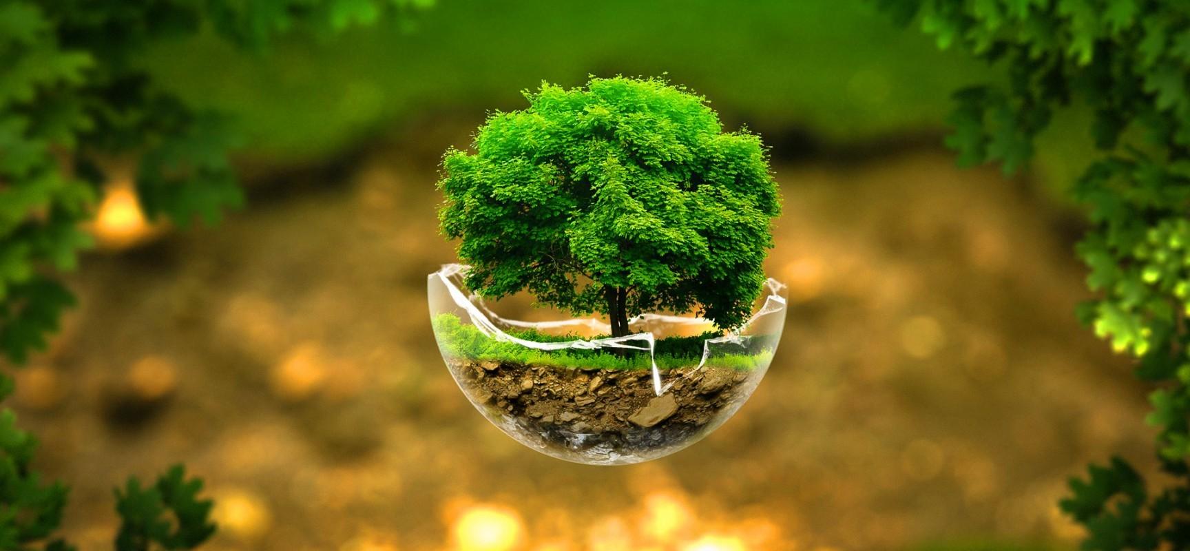 رتبه های قبولی ارشد 96 - 97 - 98 رشته علوم محیط زیست
