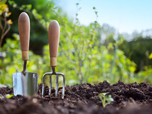 رتبه های قبولی ارشد 96 - 97 - 98 رشته علوم و مهندسی باغبانی