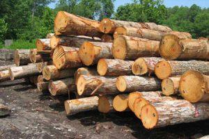 رتبه های قبولی ارشد 96 - 97 - 98 رشته مهندسی صنایع چوب و فرآورده های سلولزی