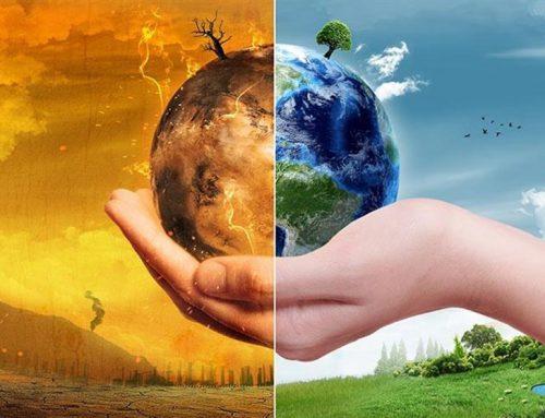 رتبه و کارنامه قبولی کنکور کارشناسی ارشد رشته علوم و مهندسی محیط زیست (کد ۱۳۱۷)